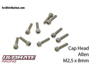 Immagine di ULTIMATE RACING - Viti  Testa Cilindrica Hex  M2,5 x 8mm (10 pz.)